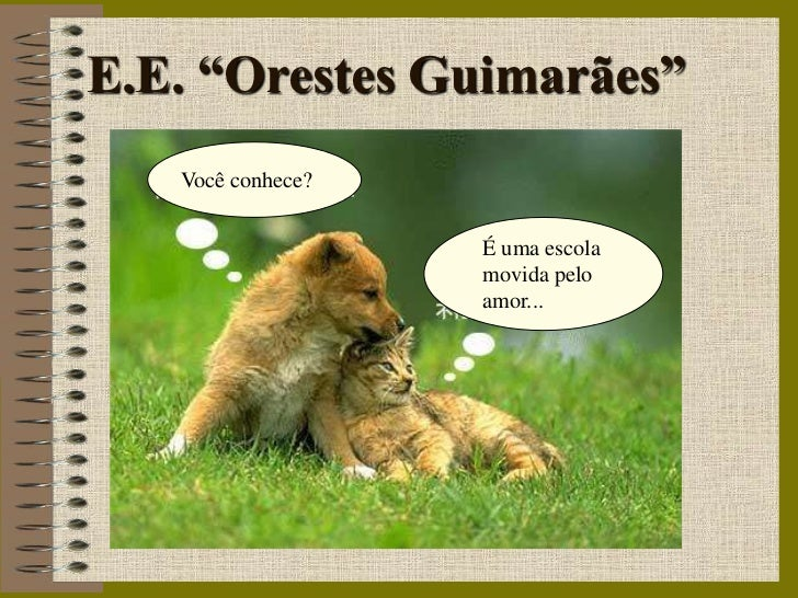 """E.E. """"Orestes Guimarães""""   Você conhece?                   É uma escola                   movida pelo                   am..."""