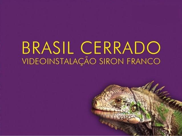 A Videoinstalação Brasil Cerrado, criada pelo artista plástico SironFranco a convite do Ministério do Meio Ambiente, foi u...