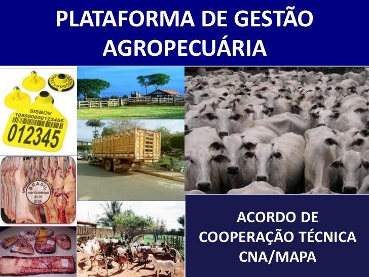 PLATAFORMA DE GESTÃO    AGROPECUÁRIA               ACORDO DE           COOPERAÇÃO TÉCNICA               CNA/MAPA