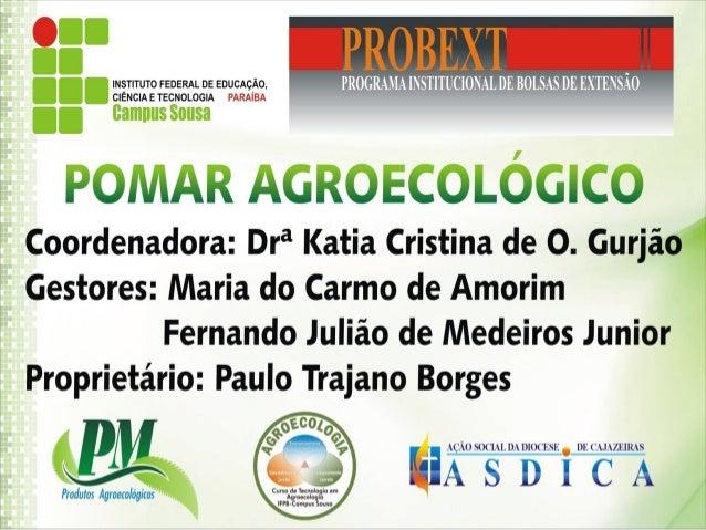 Implantação de pomar agroecológico na comunidade deCajazeiras Velha (Cajazeiras – PB): uma alternativa para odesenvolvimen...