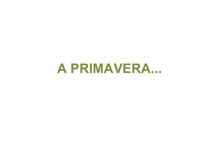A PRIMAVERA...