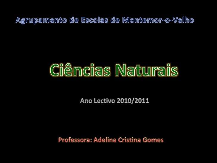 Agrupamento de Escolas de Montemor-o-Velho<br />Ciências Naturais<br />Ano Lectivo 2010/2011<br />Professora: Adelina Cris...