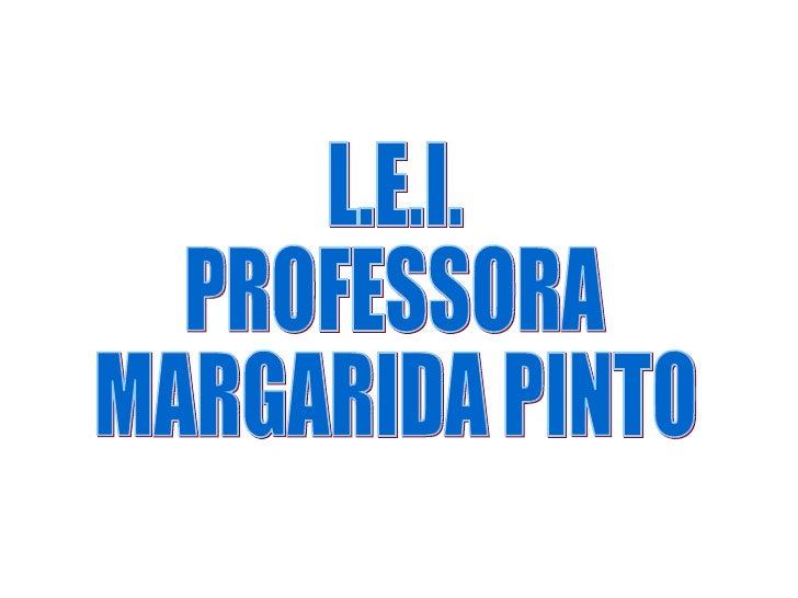 L.E.I. PROFESSORA MARGARIDA PINTO
