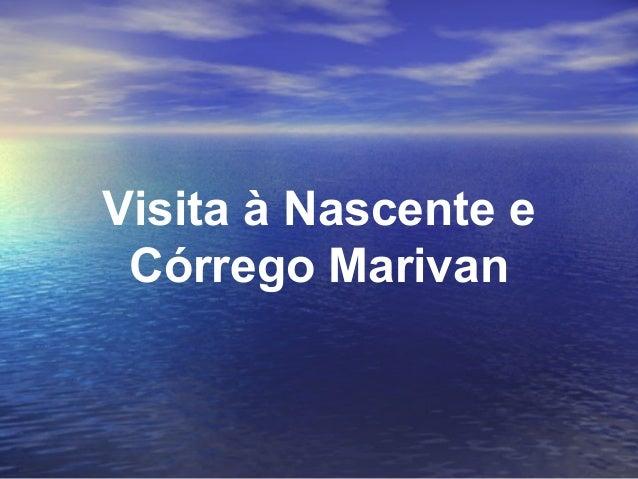 Visita à Nascente e Córrego Marivan