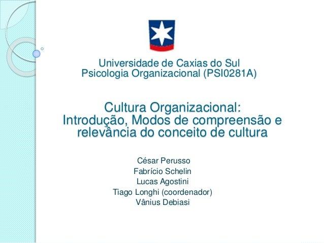 César Perusso Fabrício Schelin Lucas Agostini Tiago Longhi (coordenador) Vânius Debiasi Cultura Organizacional: Introdução...