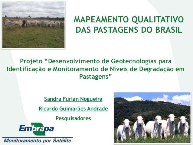 """MAPEAMENTO QUALITATIVO DAS PASTAGENS DO BRASIL Sandra Furlan Nogueira Ricardo Guimarães Andrade Pesquisadores Projeto """"Des..."""