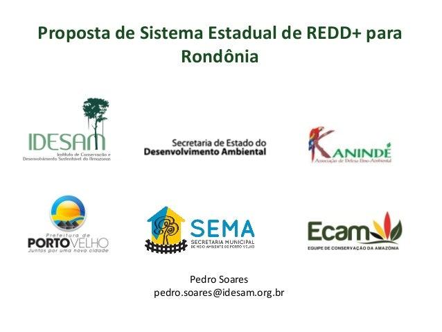 Proposta de Sistema Estadual de REDD+ para Rondônia Pedro Soares pedro.soares@idesam.org.br
