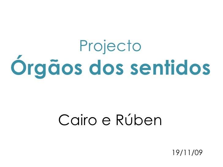 Projecto Órgãos dos sentidos Cairo e Rúben  19/11/09