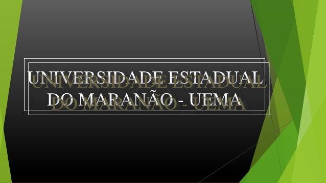 UNIVERSIDADE ESTADUAL DO MARANÃO - UEMA UNIVERSIDADE ESTADUAL DO MARANÃO - UEMA