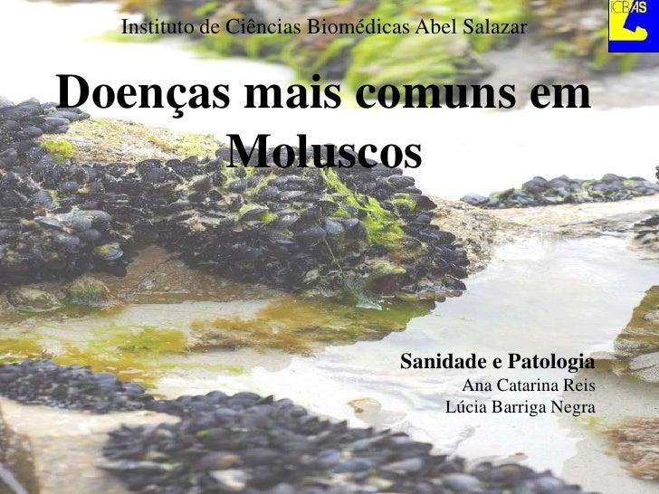 Instituto de Ciências Biomédicas Abel Salazar<br />Doenças mais comuns em Moluscos<br />Sanidade e Patologia<br />Ana Cata...