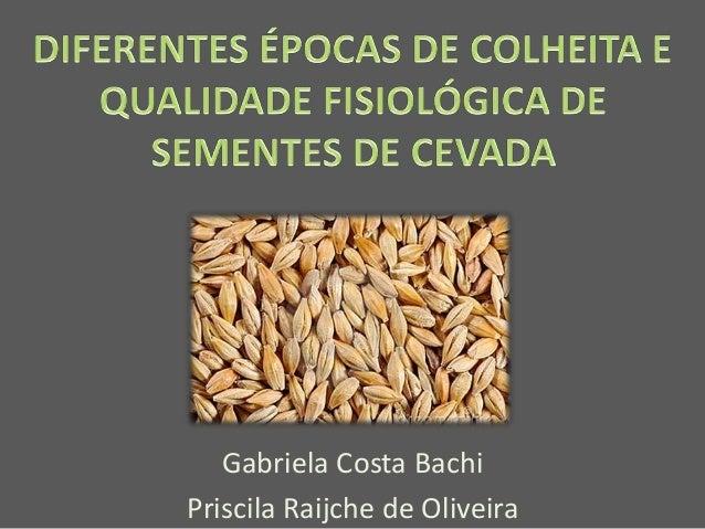 Gabriela Costa Bachi Priscila Raijche de Oliveira