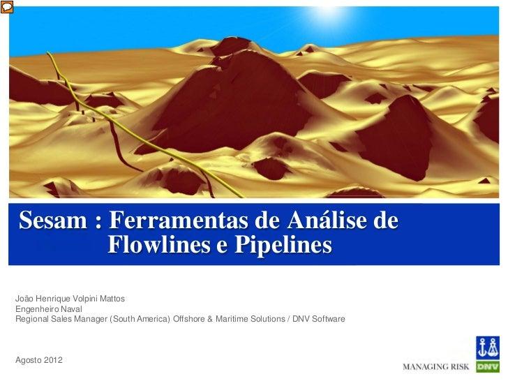 Sesam : Ferramentas de Análise de        Flowlines e PipelinesJoão Henrique Volpini MattosEngenheiro NavalRegional Sales M...
