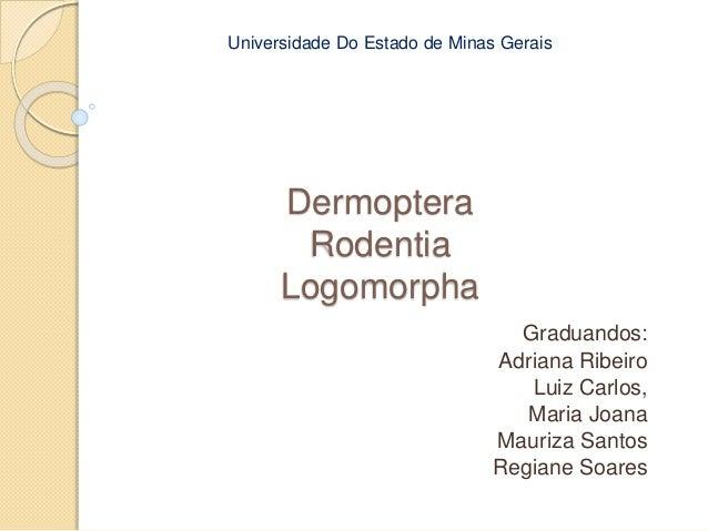 Universidade Do Estado de Minas Gerais  Dermoptera  Rodentia  Logomorpha  Graduandos:  Adriana Ribeiro  Luiz Carlos,  Mari...