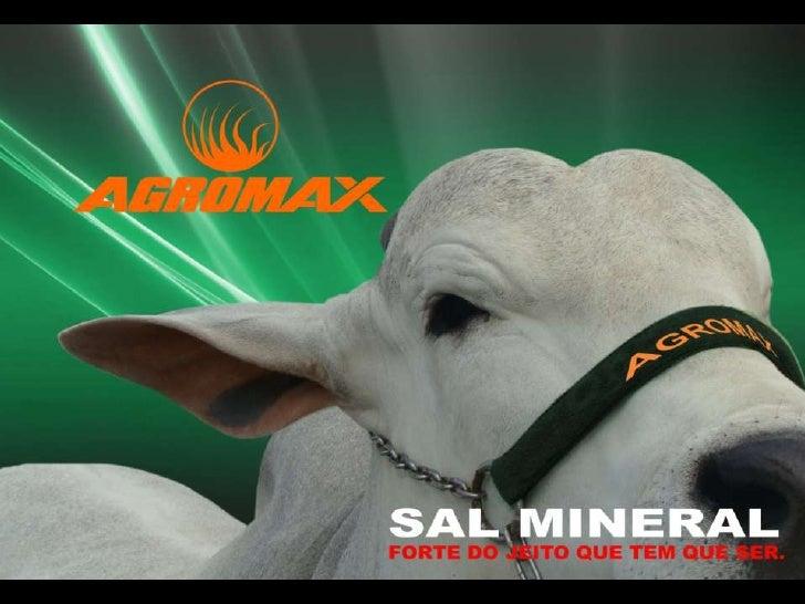 Apresentação da Linha de Sal Mineral Agromax