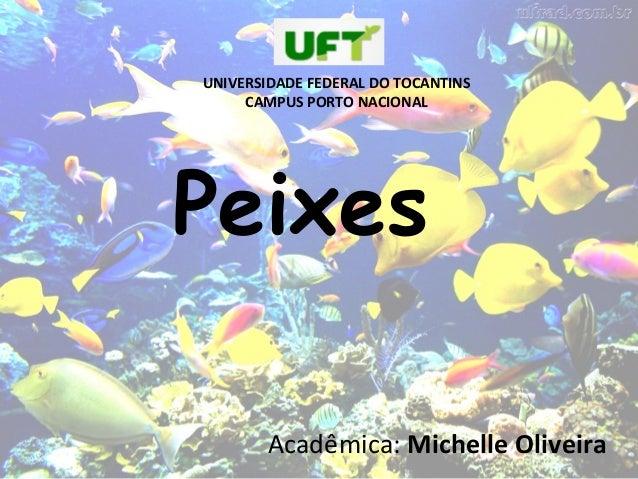 Peixes Acadêmica: Michelle Oliveira UNIVERSIDADE FEDERAL DO TOCANTINS CAMPUS PORTO NACIONAL
