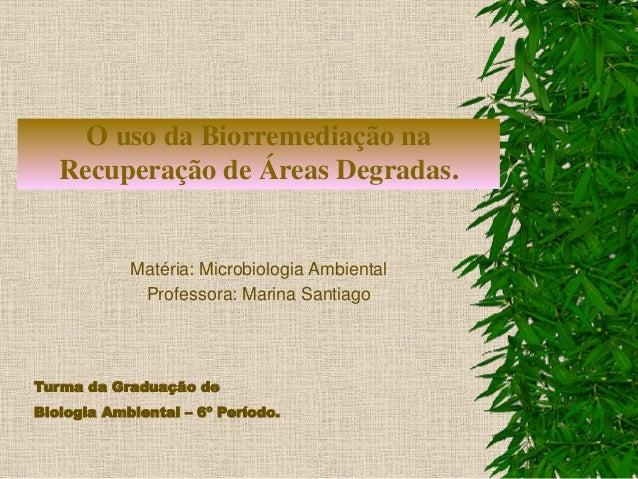 O uso da Biorremediação na Recuperação de Áreas Degradas. Matéria: Microbiologia Ambiental Professora: Marina Santiago Tur...