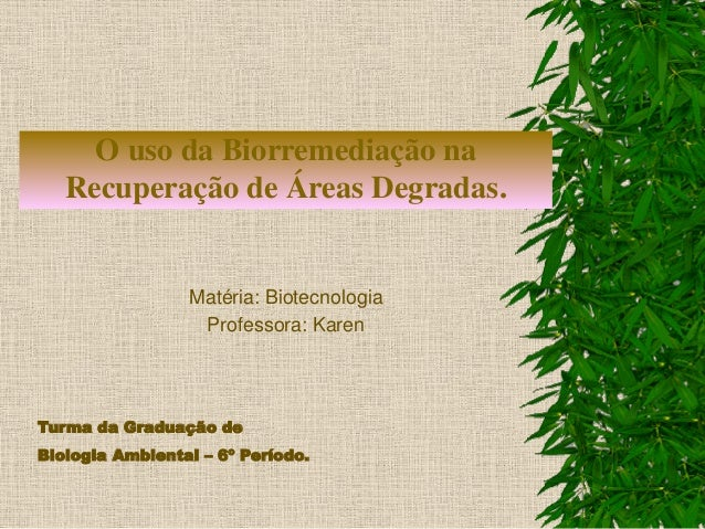 O uso da Biorremediação na Recuperação de Áreas Degradas. Matéria: Biotecnologia Professora: Karen Turma da Graduação de B...