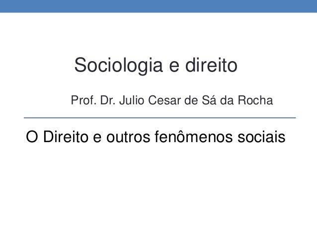 Sociologia e direito Prof. Dr. Julio Cesar de Sá da Rocha O Direito e outros fenômenos sociais
