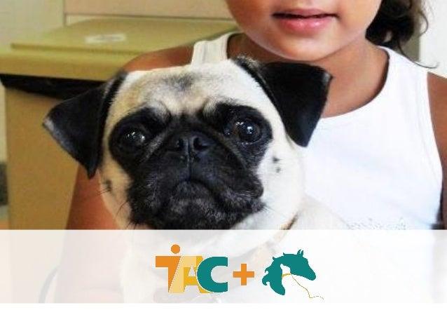 A TAC + é a união de duas OSCIP´s (TAC+ABRAHIPE), que unindo seus potenciais e conhecimentos tem como objetivo a realizaçã...