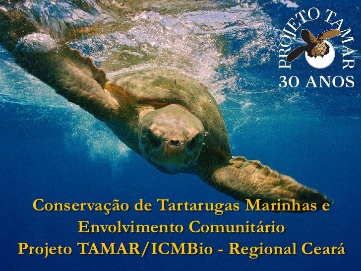 Conservação de Tartarugas Marinhas e Envolvimento Comunitário  <br />Projeto TAMAR/ICMBio - Regional Ceará<br />