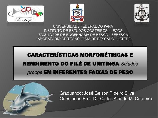 UNIVERSIDADE FEDERAL DO PARÁ INSTITUTO DE ESTUDOS COSTEIROS – IECOS FACULDADE DE ENGENHARIA DE PESCA – FEPESCA LABORATORIO...