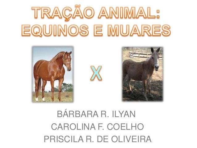 BÁRBARA R. ILYAN CAROLINA F. COELHO PRISCILA R. DE OLIVEIRA