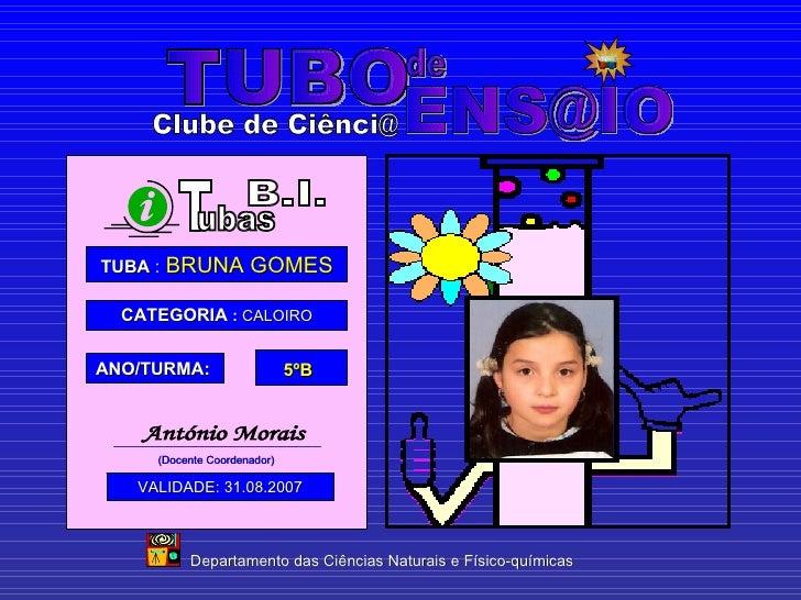 TUBO  [email_address] de Departamento das Ciências Naturais e Físico-químicas Clube de Ciênci@ TUBA  :   BRUNA GOMES CATEG...