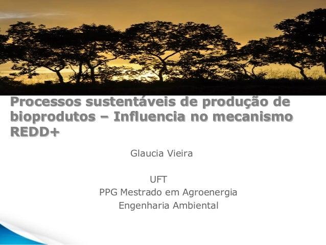 Processos sustentáveis de produção de bioprodutos – Influencia no mecanismo REDD+ Glaucia Vieira UFT PPG Mestrado em Agroe...