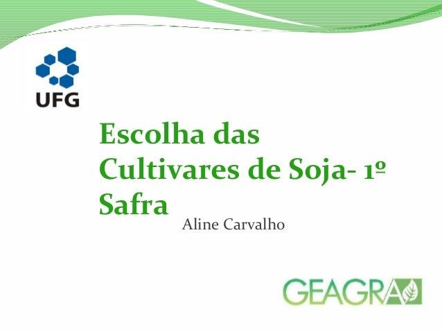 Aline Carvalho Escolha das Cultivares de Soja- 1º Safra