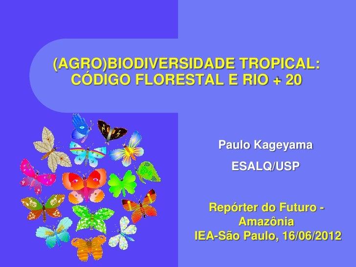 (AGRO)BIODIVERSIDADE TROPICAL:  CÓDIGO FLORESTAL E RIO + 20                   Paulo Kageyama                     ESALQ/USP...