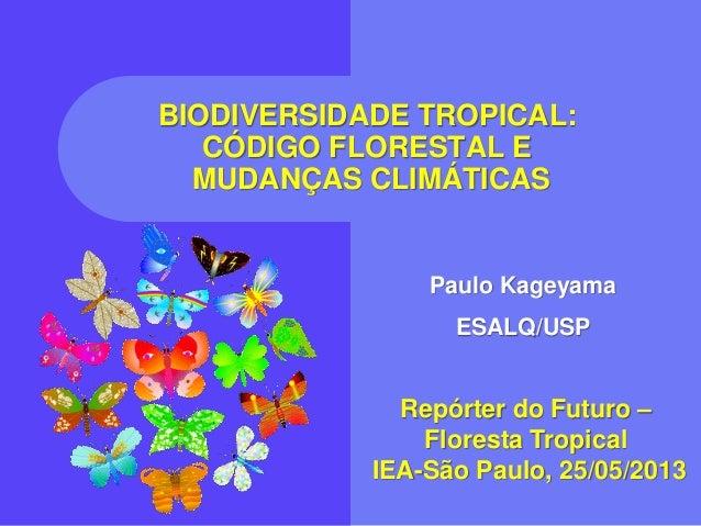 BIODIVERSIDADE TROPICAL:CÓDIGO FLORESTAL EMUDANÇAS CLIMÁTICASRepórter do Futuro –Floresta TropicalIEA-São Paulo, 25/05/201...