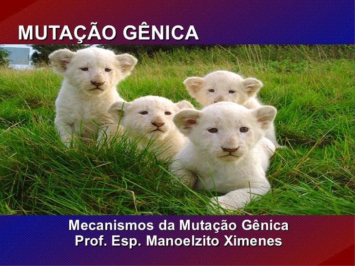 MUTAÇÃO GÊNICA Mecanismos da Mutação Gênica Prof. Esp. Manoelzito Ximenes