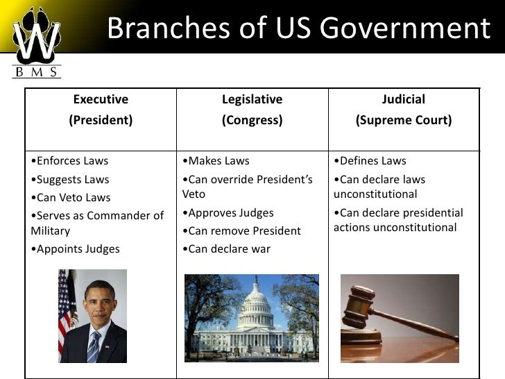 Homework help branches of government
