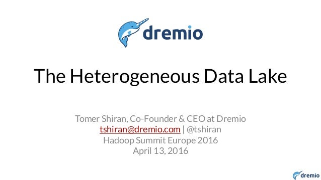 The Heterogeneous Data lake
