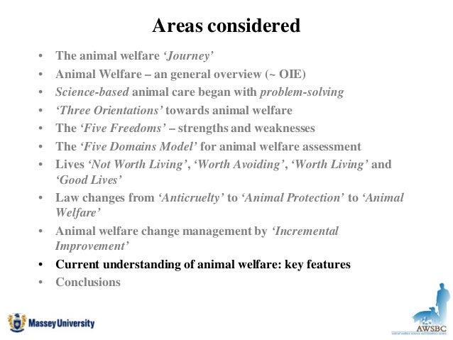 is an animals life worth a People have plenty of different opinions on this, but here's mine: the worth of an animal's life corresponds to its sentience this is the most common principle by which people measure worth i would say it also has much to do with free will.