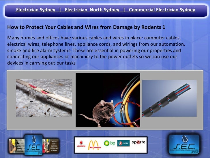 Electrician Sydney | Electrician North Sydney | Commercial Electrician SydneyHow to Protect Your Cables and Wires from Dam...