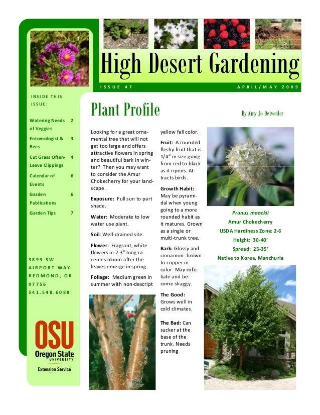 High Desert Gardening                            I S S U E  4 7                                           A P R I L / M ...