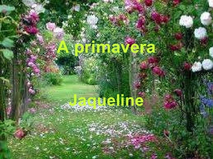 A primavera Jaqueline