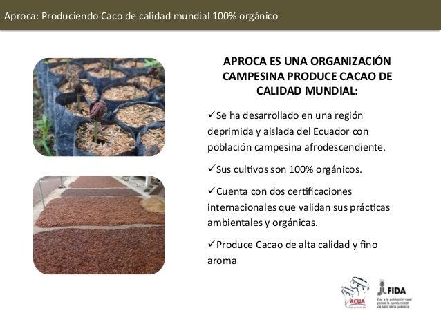 Aproca: Produciendo Caco de calidad mundial 100% orgánico                                                 ...