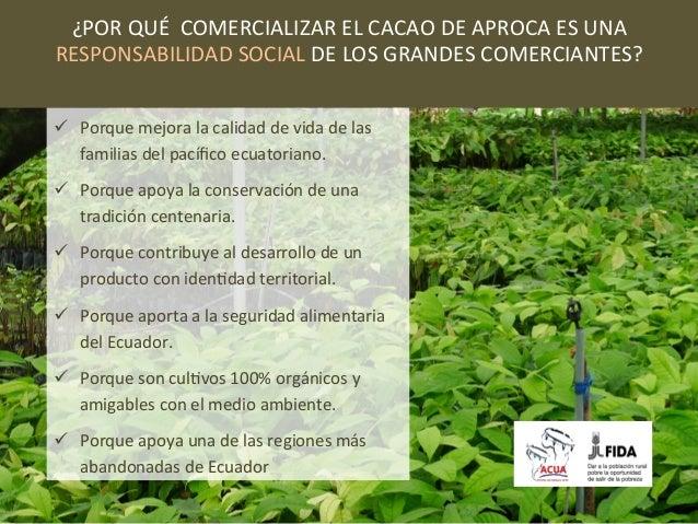 ¿POR QUÉ  COMERCIALIZAR EL CACAO DE APROCA ES UNA  RESPONSABILIDAD SOCIAL DE LOS GRANDES C...