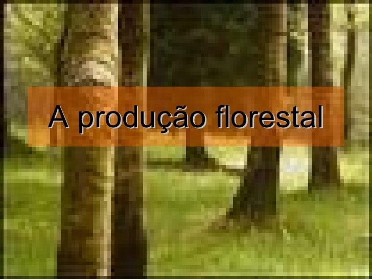 A produção florestal