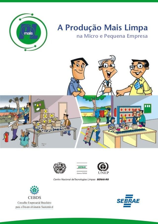 A Produção Mais Limpa na Micro e Pequena Empresa  CEBDS Conselho Empresarial Brasileiro para o Desenvolvimento Sustentável...