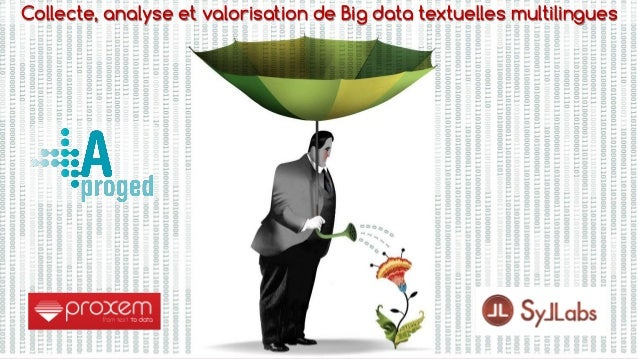 1 Collecte, analyse et valorisation de Big data textuelles multilingues