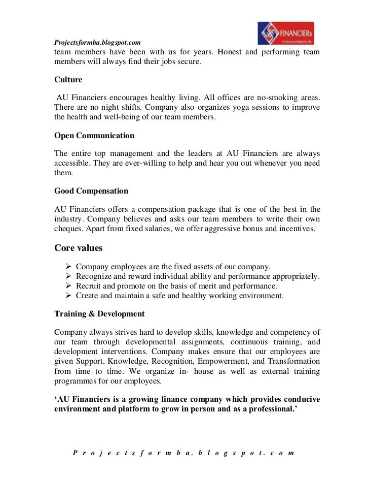 how to write a financial report for a company