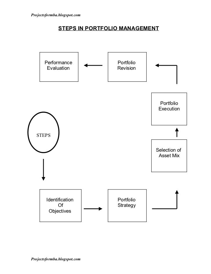 application portfolio management thesis Hcl's application portfolio management (apm) gives organizations the insight into which applications are providing value and which ones are expenditure black holes.
