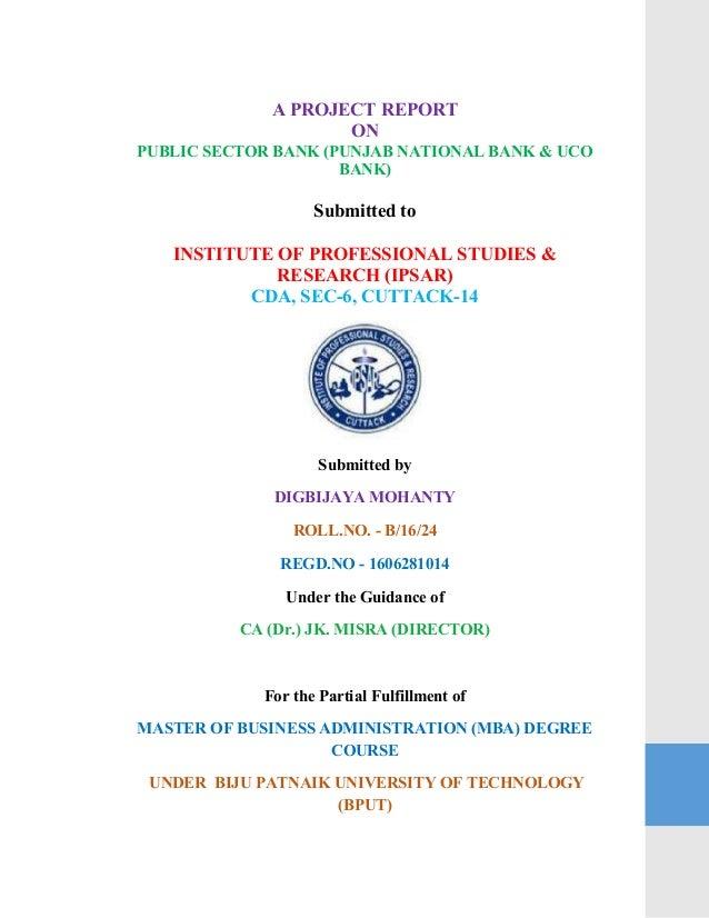 punjab national bank project finance