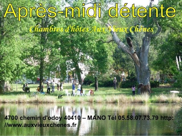 Chambres dhôtes Aux Vieux Chênes4700 chemin dodoy 40410 – MANO Tél 05.58.07.73.79 http://www.auxvieuxchenes.fr