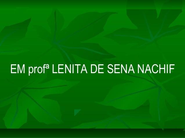 EM profª LENITA DE SENA NACHIF