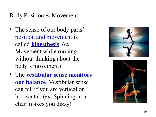 kinesthesis and vestibular Ap psych semester 1 final exam (lesson 4) description mastery/speedback questions from lesson 4 semester 1 audition, kinesthesis, and the vestibular sense.
