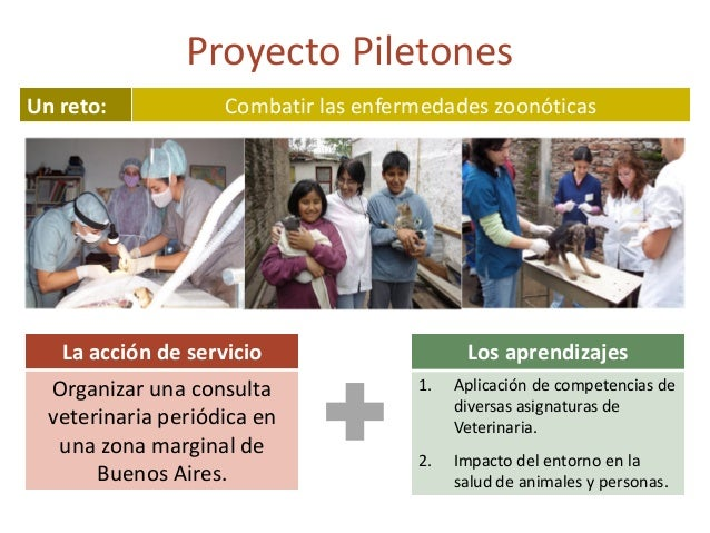 Necesidad social Servicio a la comunidad Aprendizajes ¿Qué tienen en común? El trabajo en red con los actores del entorno
